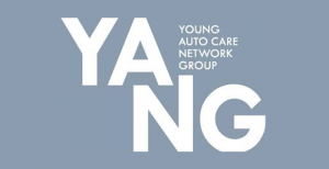 YANG - Network Group - Logo